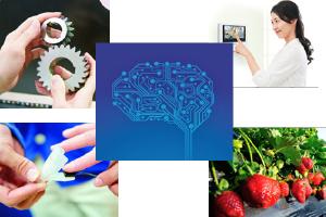 AI application research in Suwa